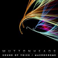 Sound Of Voice - Macrocosme