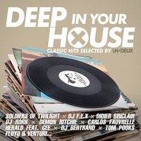 Deep In Your House Vol.12