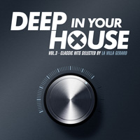 Deep In Your House Vol.3