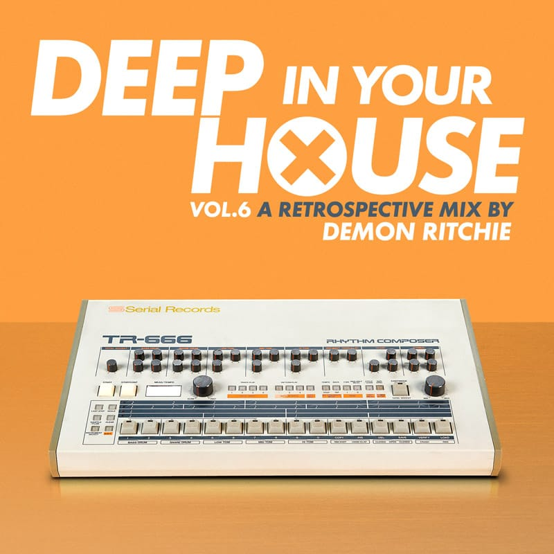 Deep In Your House Vol.6